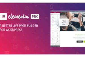 Elementor Pro 3.0.9 WordPress Plugin Package Free Download