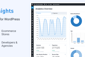 Monster Insights – The Best WordPress Analytics Plugin Plus Addons Free Download
