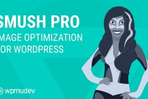 Smush Pro WordPress Plugin Free Download
