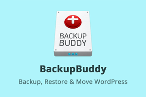 iThemes BackupBuddy WordPress Plugin Free Download
