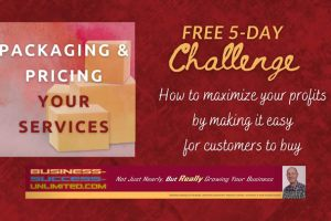 How to 'Package & Price Your Services' in just 5 Days Free Download