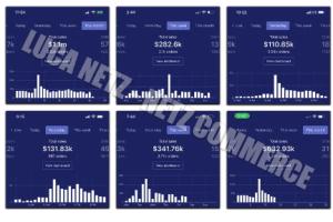 Luca Netz - Advanced Dropshipping Download
