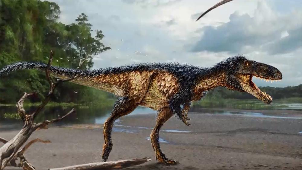Pre-Rex_151985