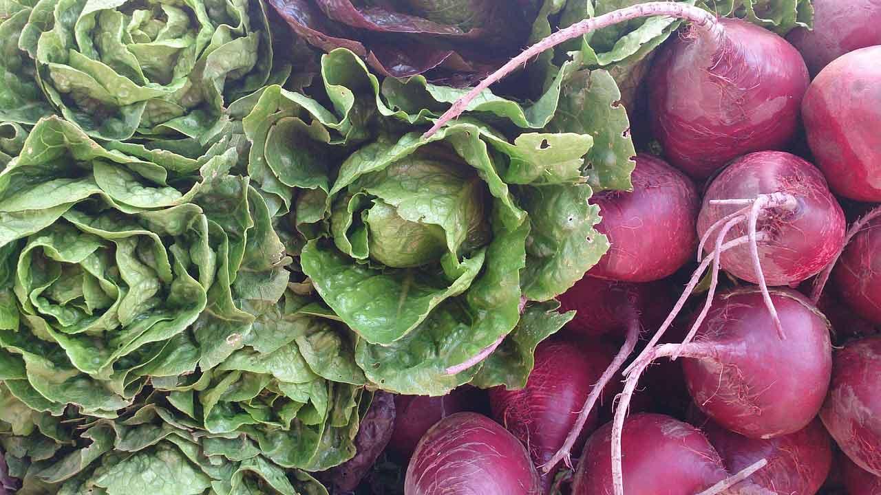 vegetables-produce-generic_374826