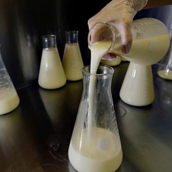 Human Milk Depot_406879