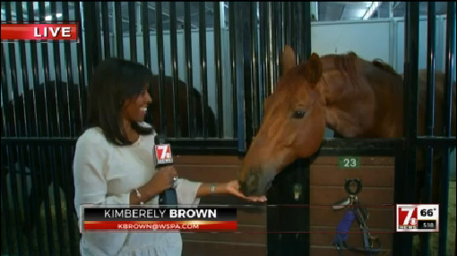 kim and horse_450216