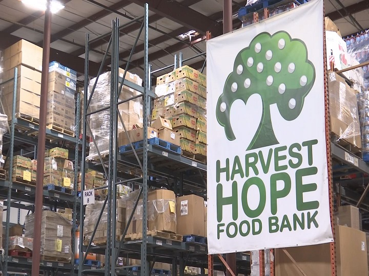 harvest hope food bank_522007