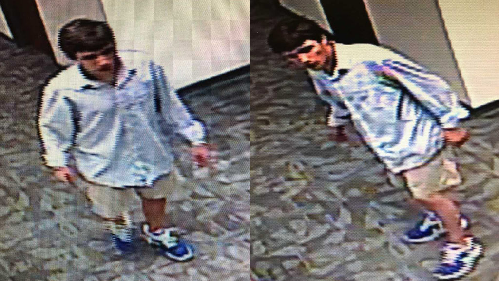 greenville co. courthouse break-in suspect