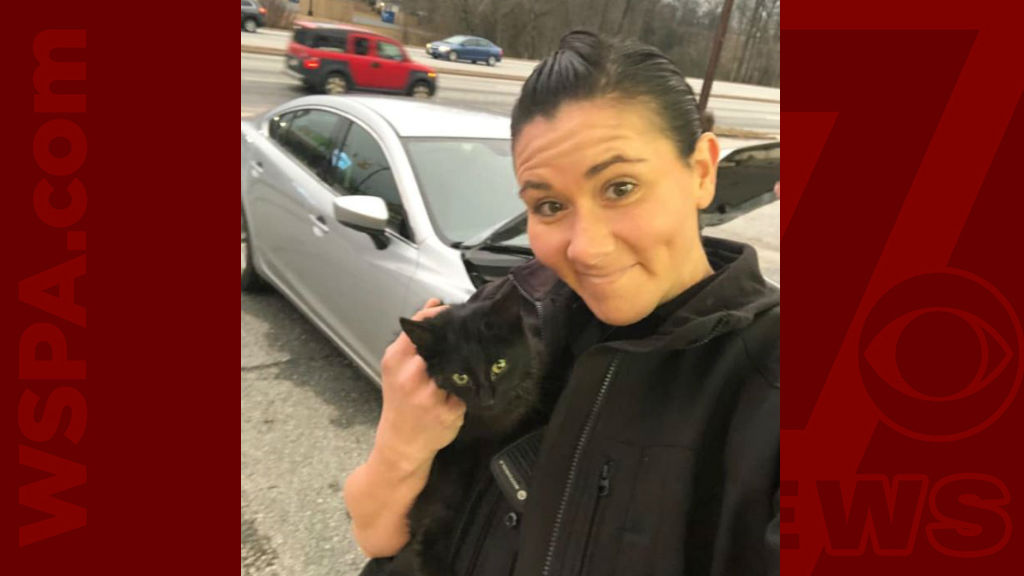 Spartanburg kitten rescue WEB_1547564029055.jpg.jpg