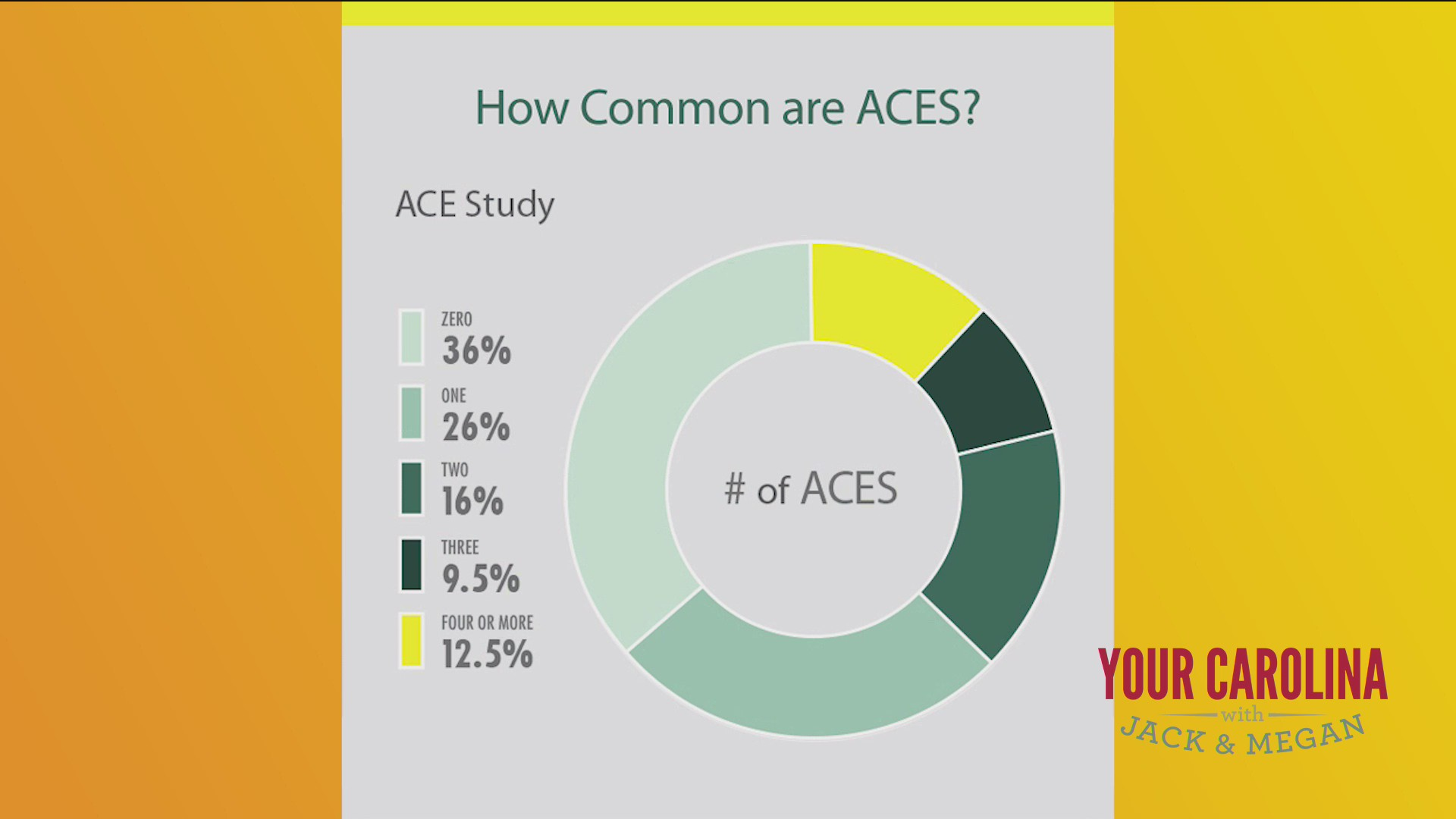 Adverse Childhood Experience And How They Affect People