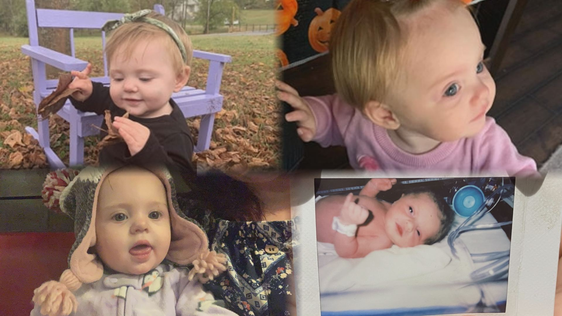Search For Evelyn Boswell A Timeline Of Events Wspa News