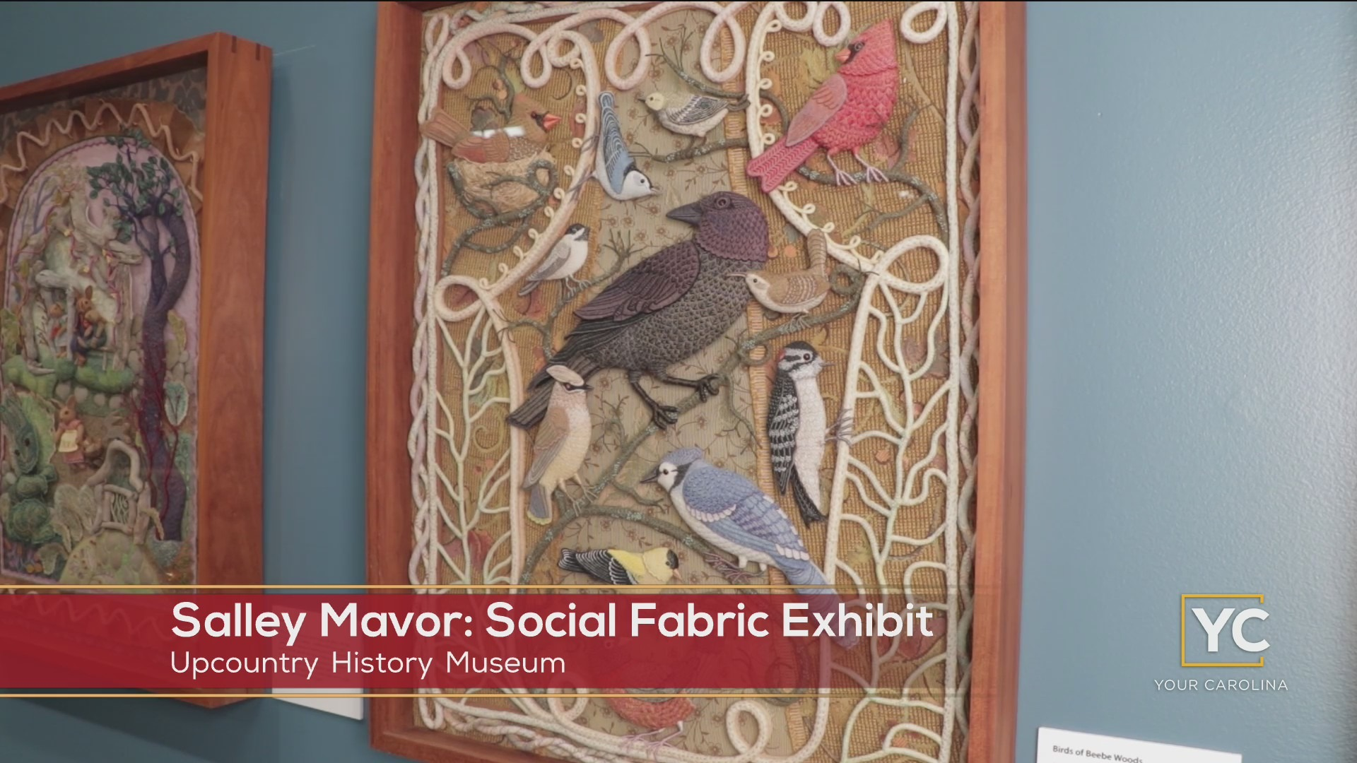 New Exhibit: Salley Mavor: Social Fabric At The Upcountry History Museum