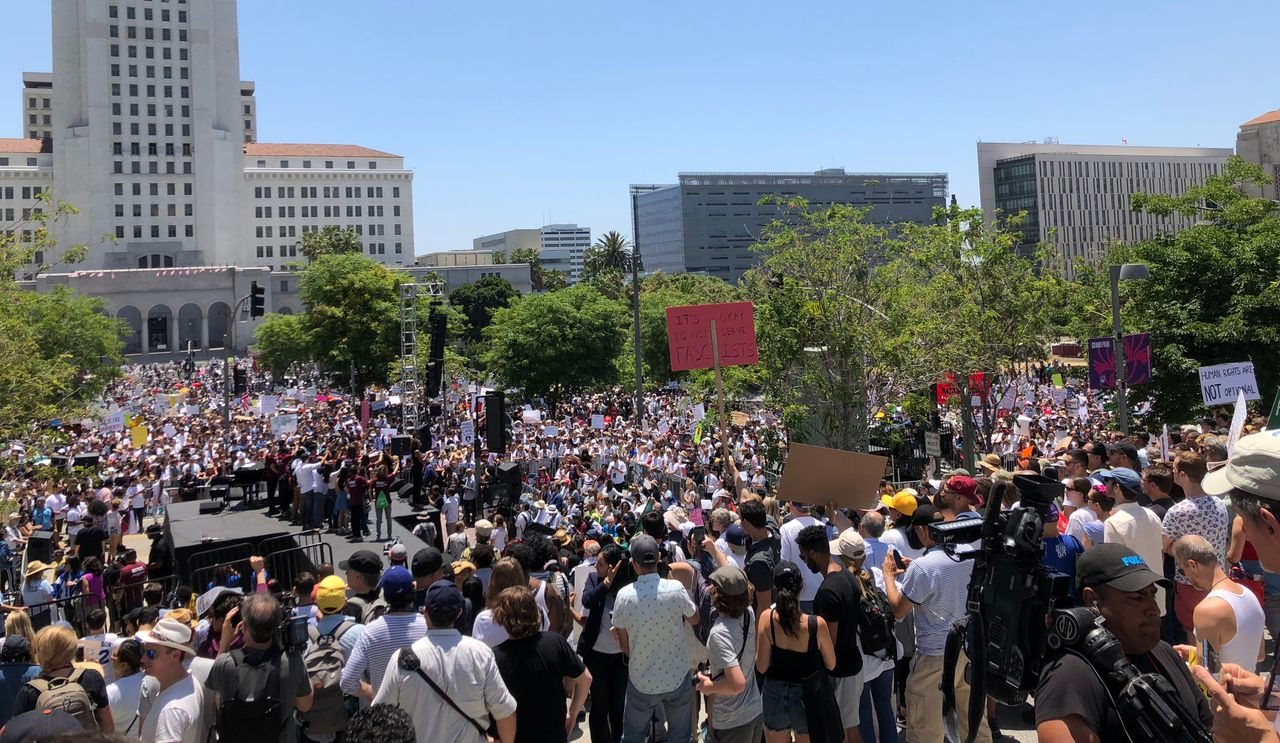 A section of the pro-immigrant children rally in Los Angeles