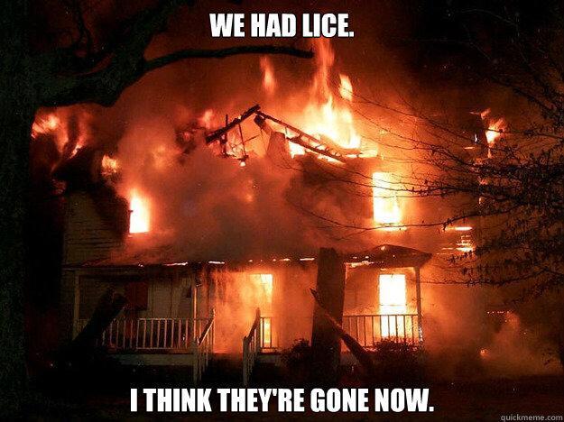 lice7