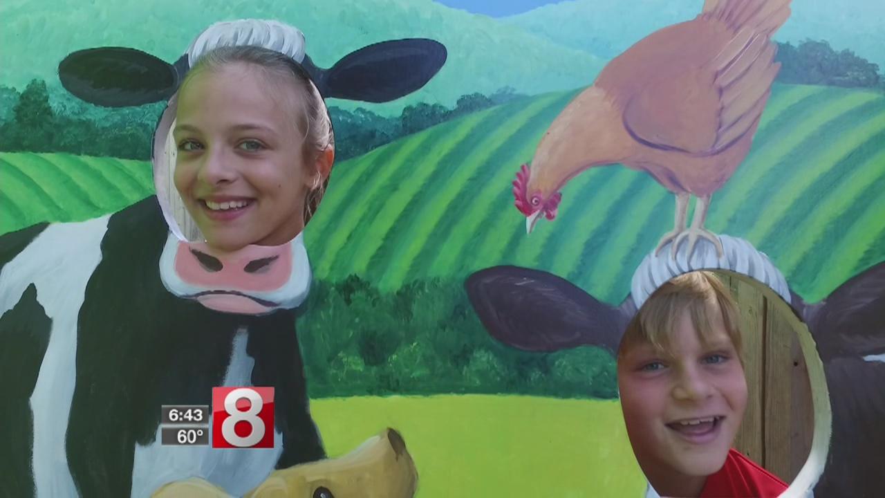 farmers cow calfe creamery mansfield ct_478894