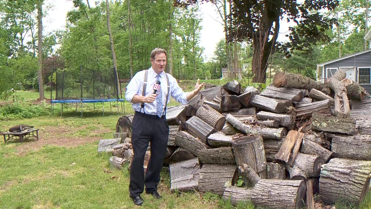 Web Extra: Hamden to host tornado damage assessment meeting