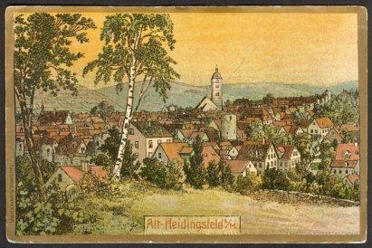 Blick auf alt Heidingsfeld (Michael Greiner)