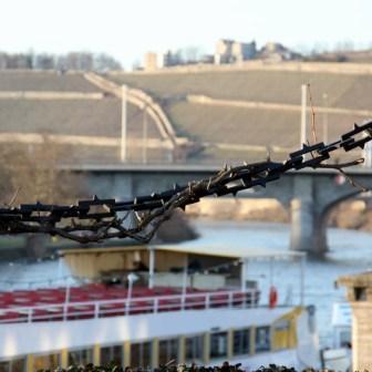 Blick über die schweren Stahlketten hinüber zu Friedensbrücke und Steinburg im Hintergrund.