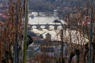 Blick auf Würzburg aus den Weinbergen am Stein.