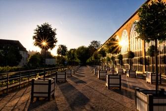 Wunderschöner Sonnenuntergang im Hofgarten der Residenz an der Orangerie.