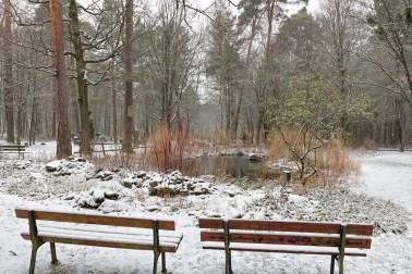 Winter am Waldfriedhof.
