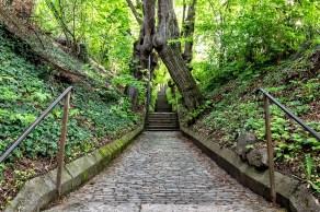 """Ein wirklich """"uriges"""" Stück Würzburg ist der alte Fußweg hoch zum Käppele."""