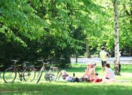 ... bei einem gemütlichen Picknick mit Freunden...