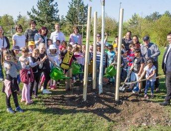 Grundschule Heuchelhof: Ein Baum für Syrien