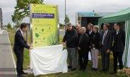 Zweite Klimabaumallee in Würzburg: In Kooperation zum idealen Stadtbaum