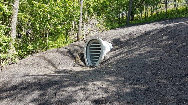 Tunnelsystem auf dem Hubland wird Fledermauswinterquartier