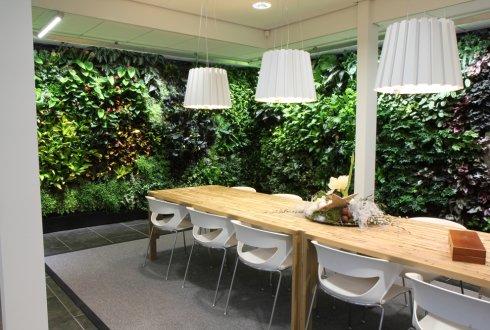 Planten in kantoren en zorginstellingen kostenpost of