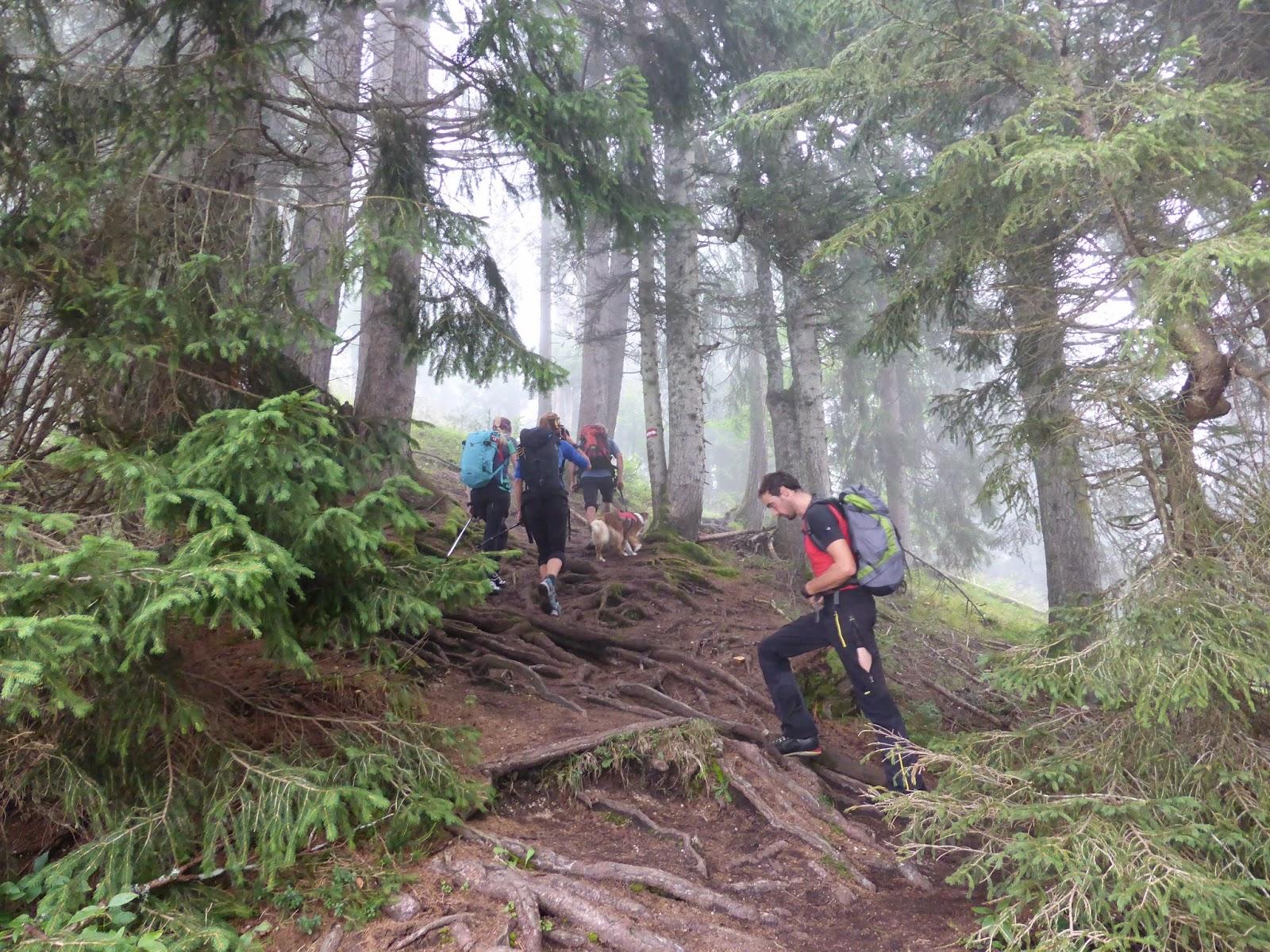 Birnhorn Aufstieg