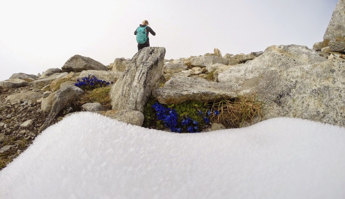 Großer Hafner (3076m) – einsame und sehr lange Tour in der Ankogelgruppe