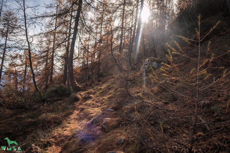 Herbstlicher Aufstieg im Hagengebirge