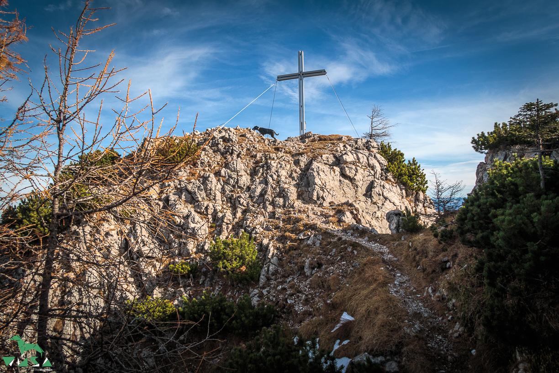 Gipfel des Bärenstuhl in Golling