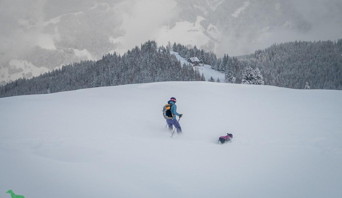 Skitour Penkkopf (2011m) – Schneeloch oberhalb der Kleinarler Hütte