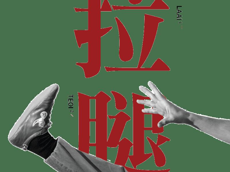 Flexinar Basis Wushu Taichi Akademie