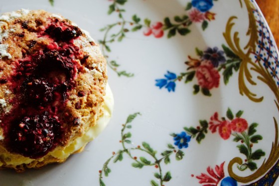The Pastry room scone mix, gluten free, dairy free, egg free