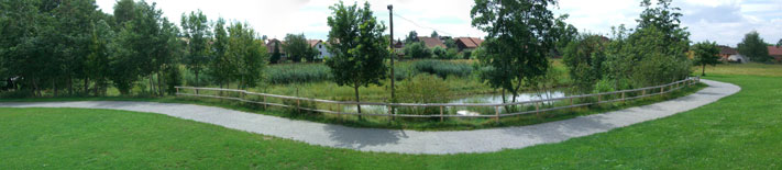 Biotop - Hochwasserschutz Etzelshoferbach