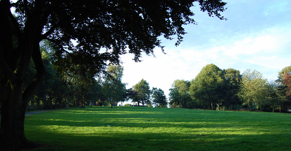 wednesfield_park