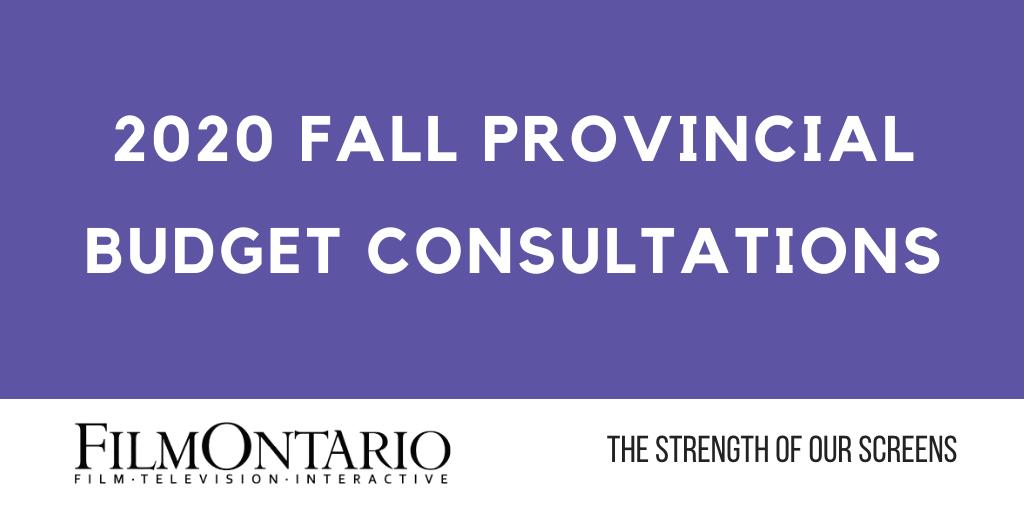 2020 Fall Provincial Budget Consultations