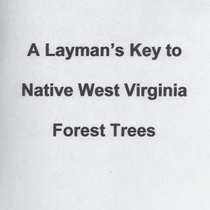 Native Trees of West Virginia