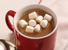 Weight Watchers Hot Cocoa Recipe