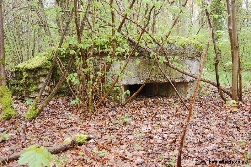 """One of the small """"forts"""" WW1 bunkers along Hunter Avenue, Ploegsteert Wood"""