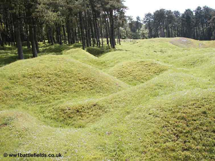 Trench lines at Vimy