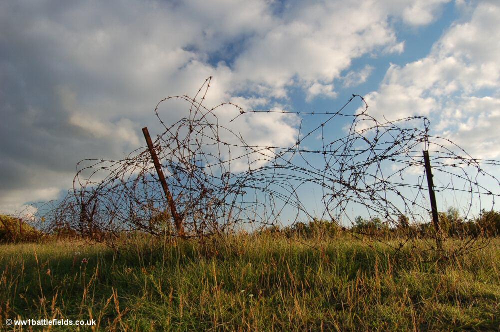 Barbed wire near Verdun