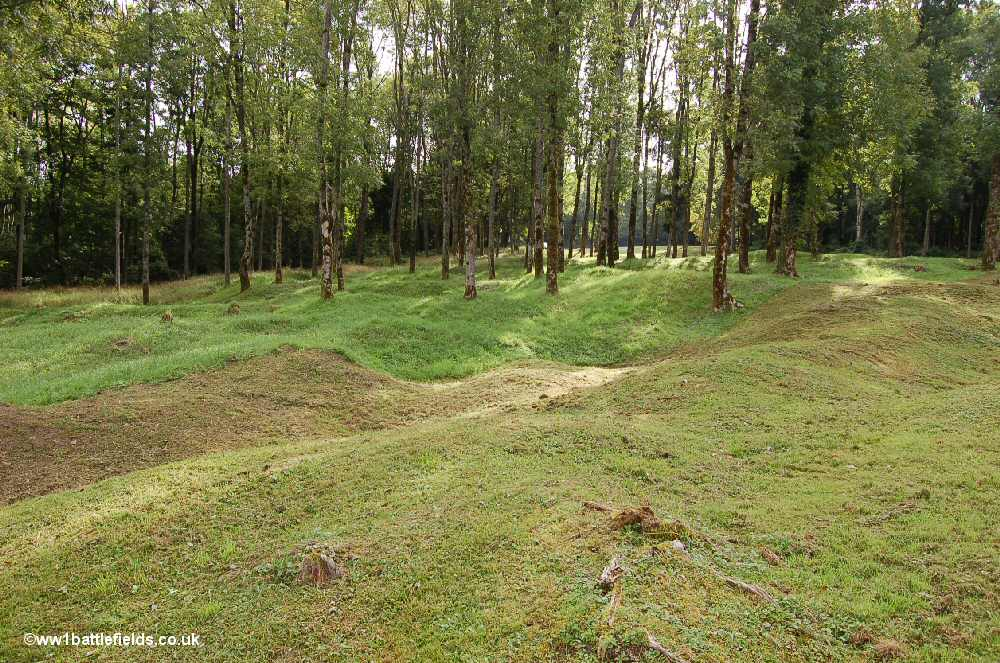 The land at Douaumont still bears the scars of shelling