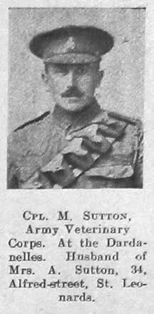 M Sutton