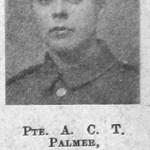 A C T Palmer