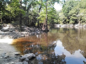 300x225 Downstream, in Little River @ GA 133 bridge, by John S. Quarterman, for WWALS Watershed Coalition, 13 June 2014